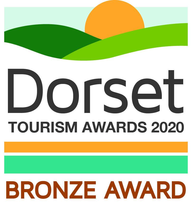 DTA Bronze Award 2020 Logo